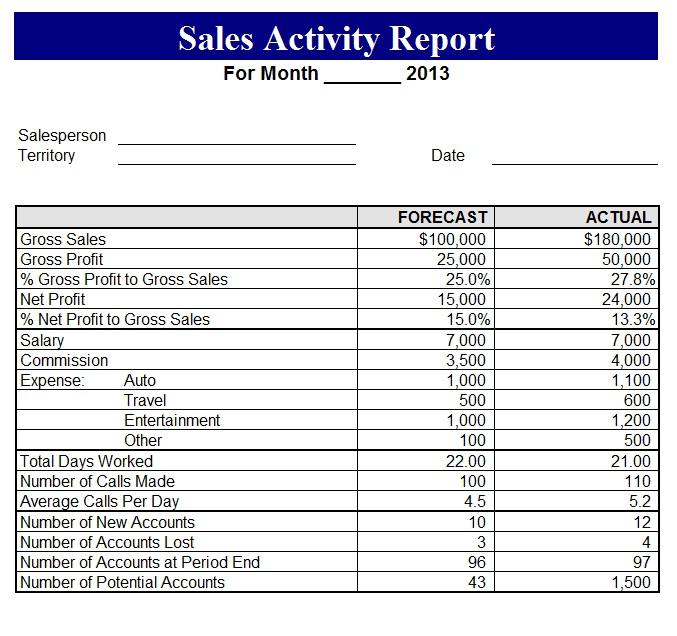 Daily Sales Activity Report Format – Printable Editable Blank