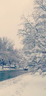 Snowy MN