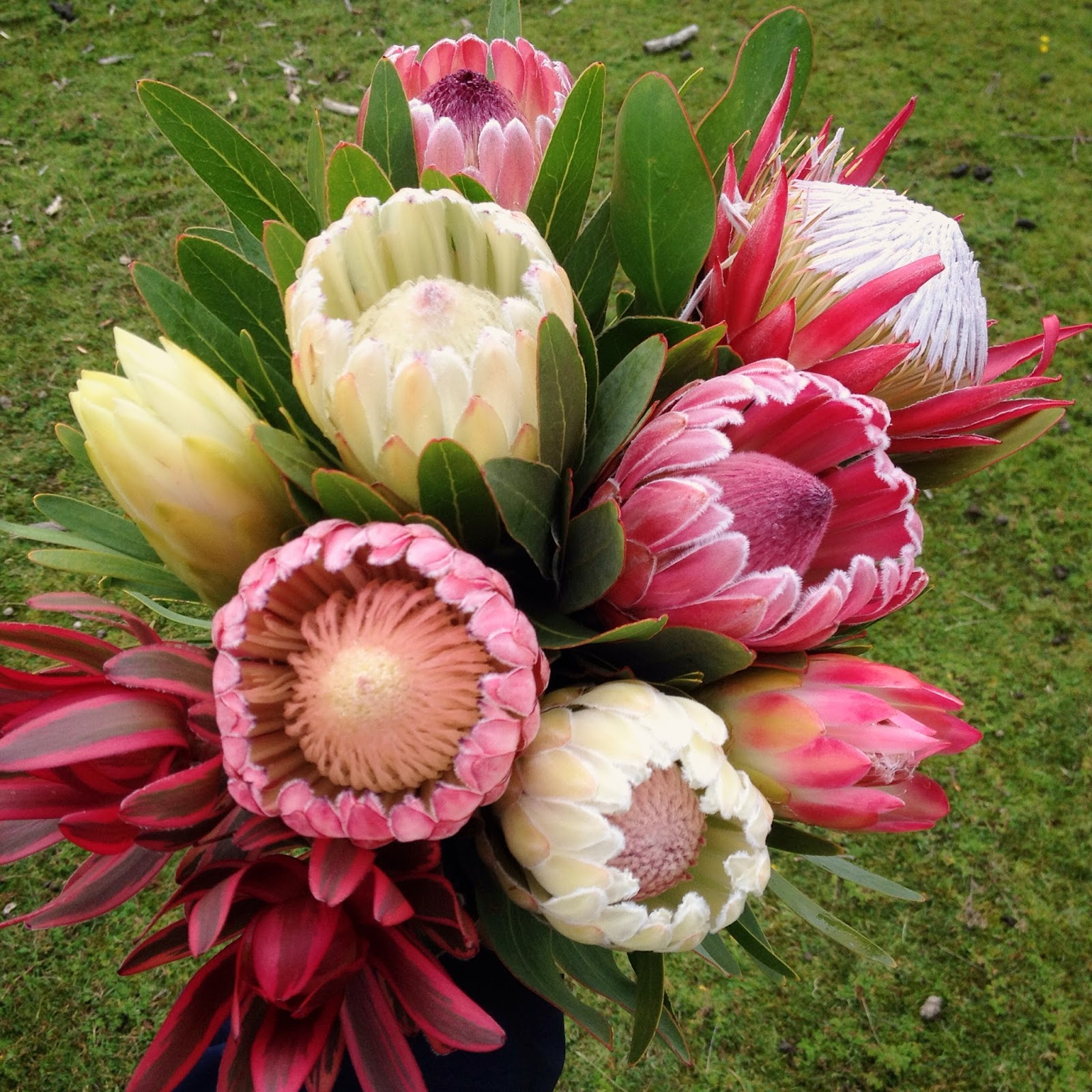 April Bouquets: Swallows Nest Farm