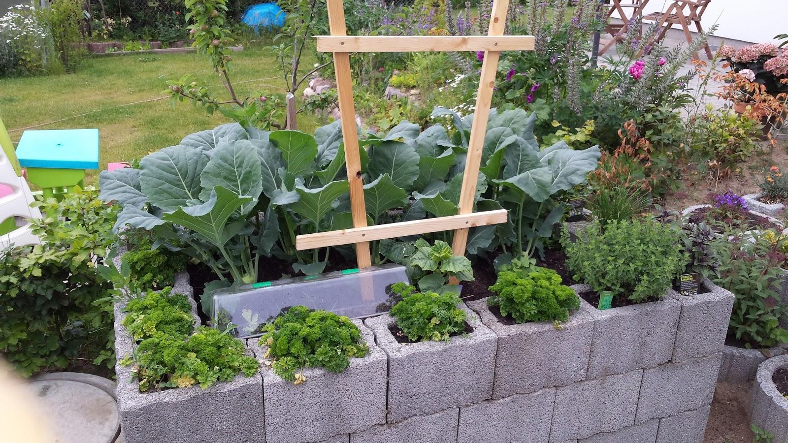 Gartengestaltung Ideen Mit Pflanzsteinen Stutzmauer Gunstig Selber