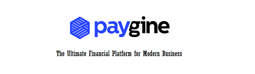 Paygine - The Ultimate Financial Platform for Modern Business