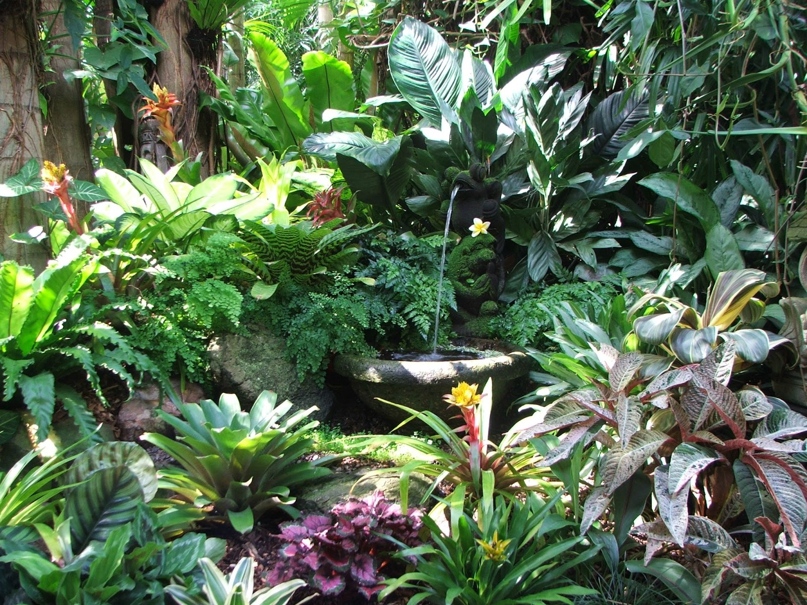 Dennis Hundscheidt's tropical-Asian themed garden in ...