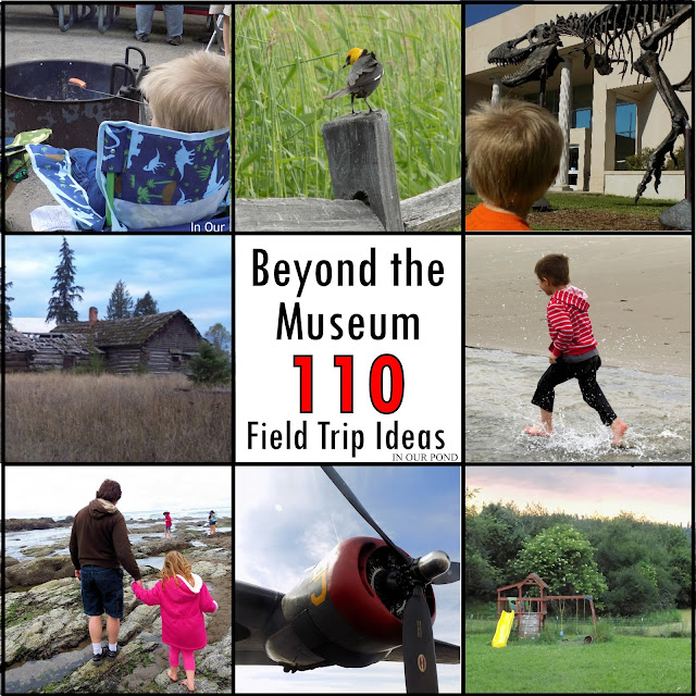 Beyond the Museum- 110 Field Trip Ideas from In Our Pond