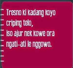 Kata Kata Romantis Bahasa Jawa