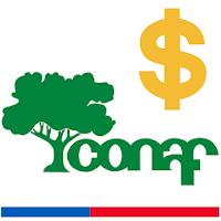 Situación presupuestaria de Conaf 2019 preocupa a FENASIC