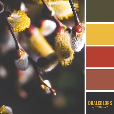 Color Paleta 160