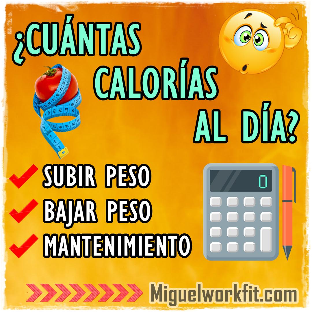 Cuantas calorias comer al dia para bajar de peso
