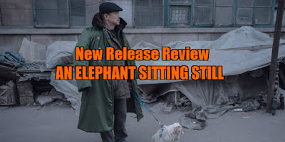 an elephant sitting still review