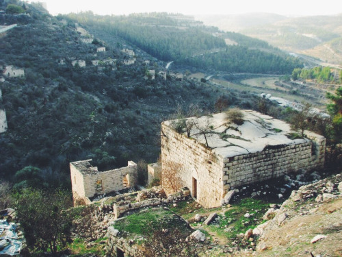 Lifta, The Western Gate of Jerusalem