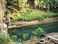 Tirta Watu Gede Petilasan Ken Dedes di Bumi Singhasari