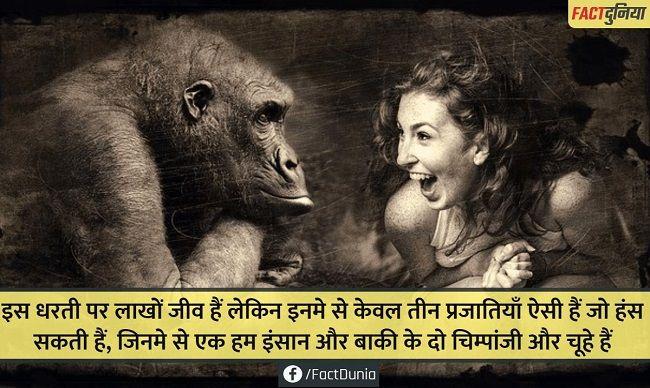 nature-animal-fact-hindi-laugh