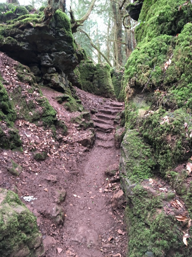 mud path leading to steps with a small pile of stones in the forground