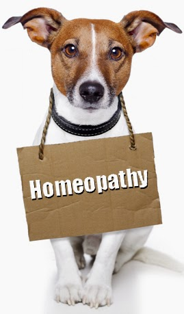 Post Graduate Certificate Course in Veterinary Homoeopathy by KVASU