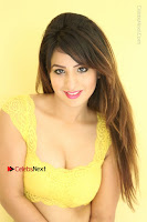 Cute Telugu Actress Shunaya Solanki High Definition Spicy Pos in Yellow Top and Skirt  0170.JPG