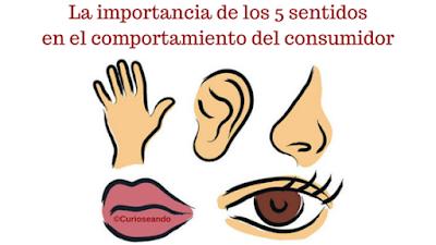 La importancia de los 5 sentidos en el comportamiento del for El divan de los sentidos