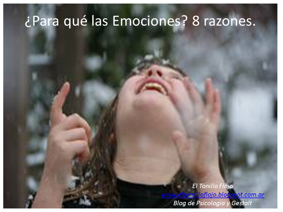 Psicologia, Gestalt, El Tornillo Flojo, Emociones, Comunicacion no verbal, Aida Bello Canto, Sentimientos