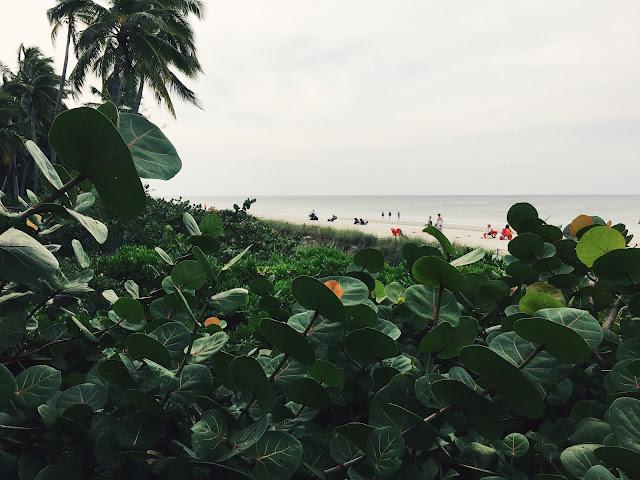 A change of scenery: Naples, Florida