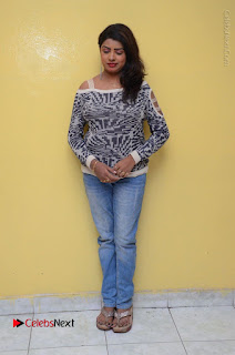 Actress Sridevi Stills in Jeans at No 1 Hero Rajendra Press Meet  0109.JPG