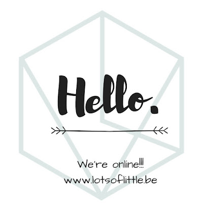 Lots of Little webshop en blog lancering