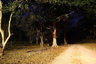Delhi Cantt most popular haunted places in Delhi