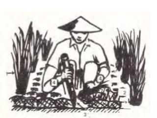 Alat penyiang tradisional