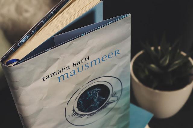 Buchblog, Mausmeer, Rezension, Miss Paperback, Bücher, Buchempfehlung, Jugendbuch