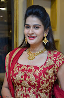 Jenny Honey in Stunning Dark Red Anarkali Dress at Splurge   Divalicious curtain raiser ~ Exclusive Celebrities Galleries 075.JPG