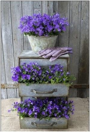 Daur ulang laci bekas jadi pot tanaman.