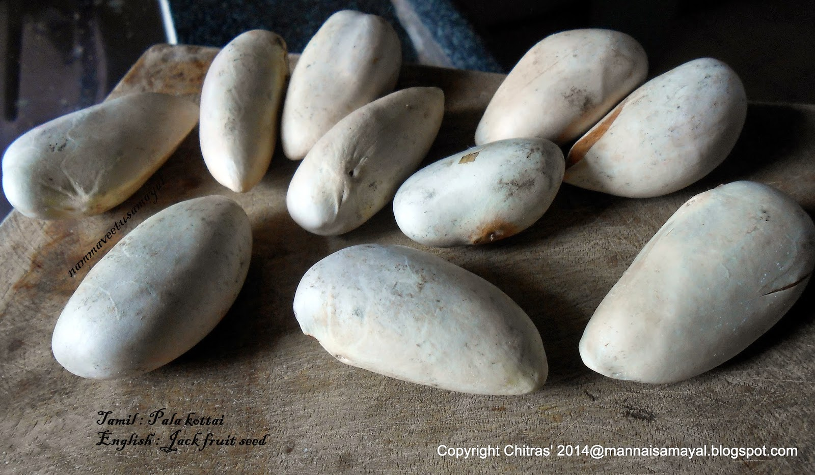 Palakottai [ Jackfruit seed ]