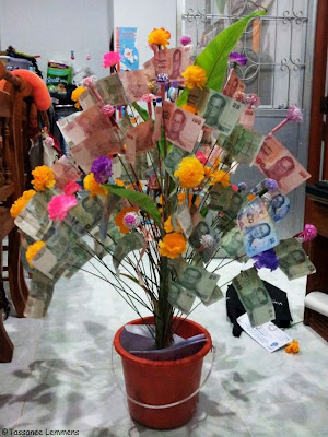 Money tree for the school