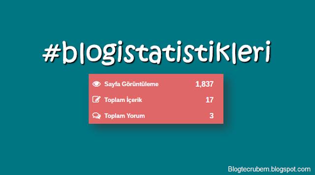 """Blogger için özel """"blog istatistikleri"""" widgeti"""