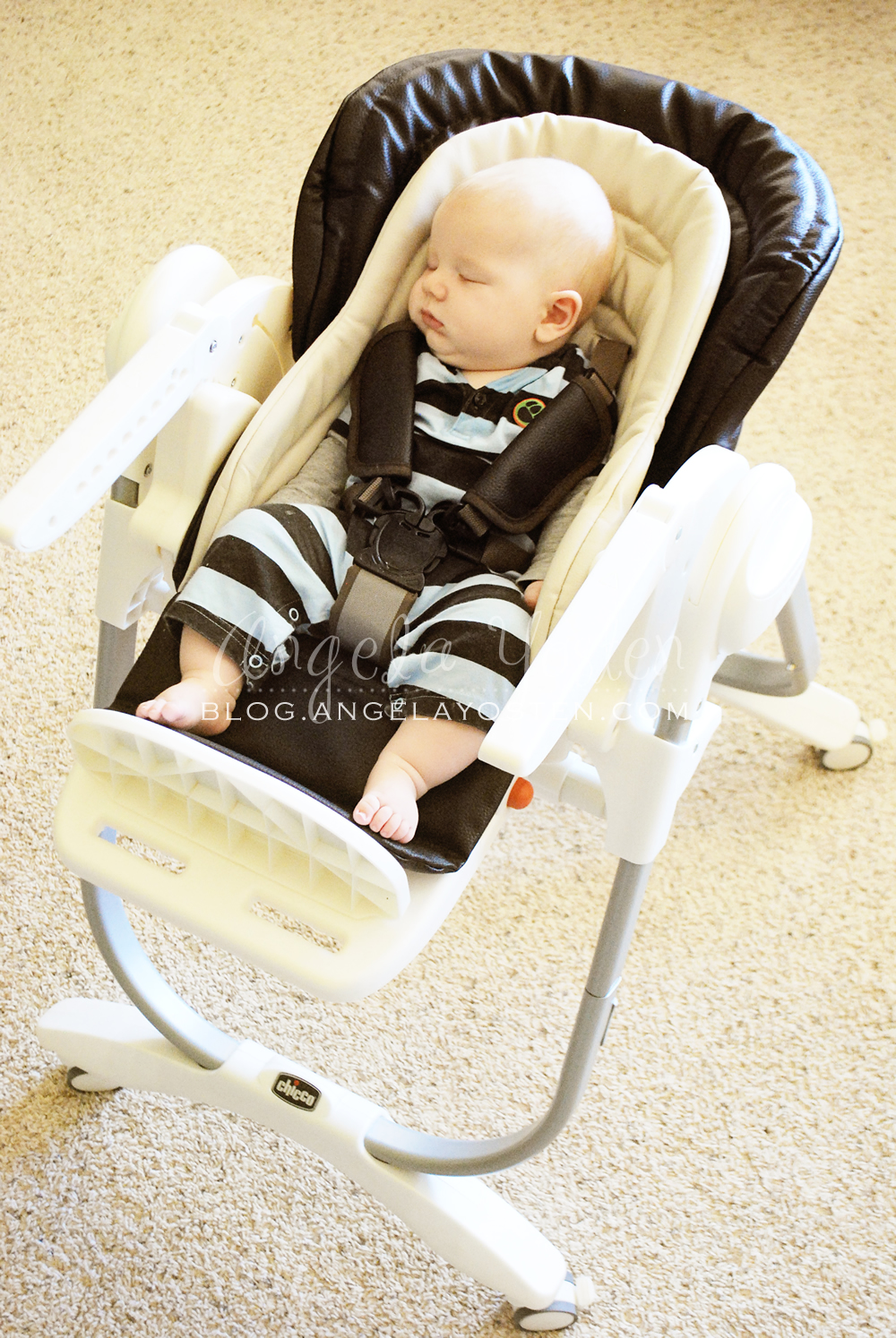 best high chair for babies white bistro hire angela yosten: mom reviews - chicco polly magic highchair