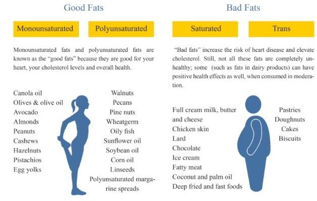 Good fat and bad fat.