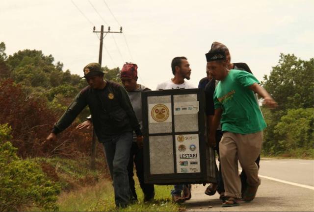 Pahlawan Konservasi Dari Tanah Naga, Aceh Selatan