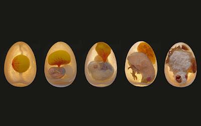 Nacimiento de las aves