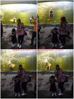 Epi Friezta Dewi Hasibuan dan Clarissa Astrid Sofia Friezcen di Underwater Theater Ocean Dream Samudra Ancol