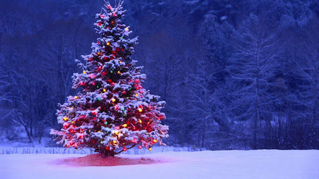 happy christmas day 2017 images, happy christmas pictures free download