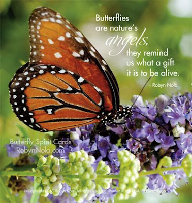 butterfly-quotes-for-love