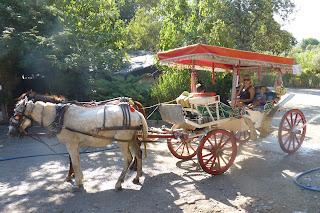 Yolanda y los niños en el carruaje