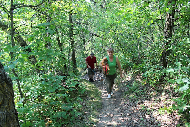 Sprucewoods hiking trails