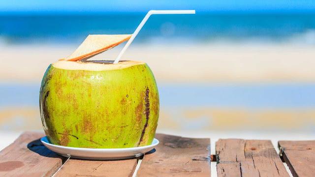 gambar wallpaper kelapa segar