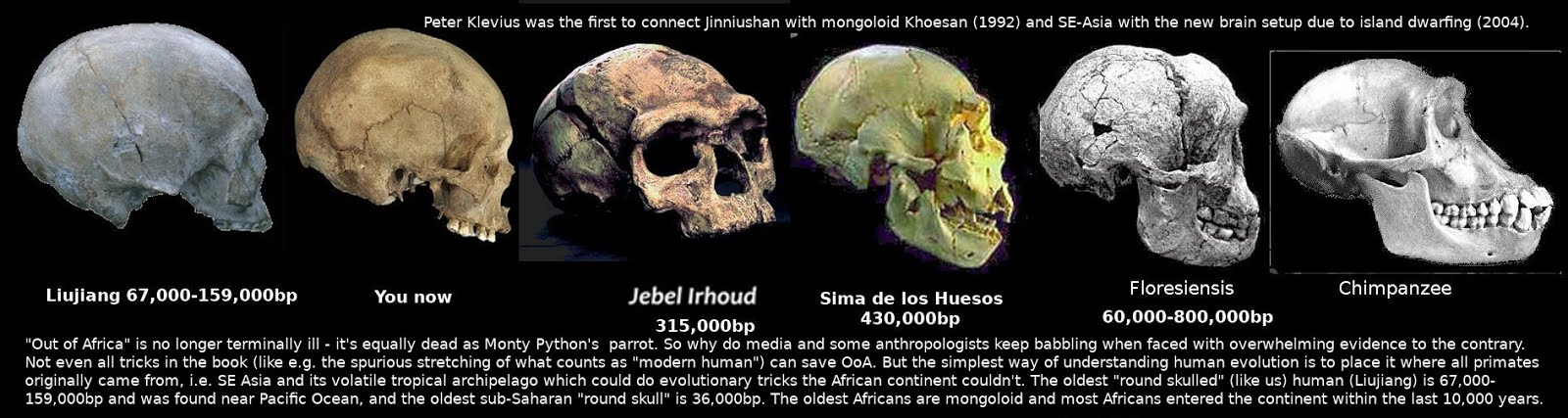 Modern humans evolved in tropical SE Asia and cold Siberia, according to Klevius
