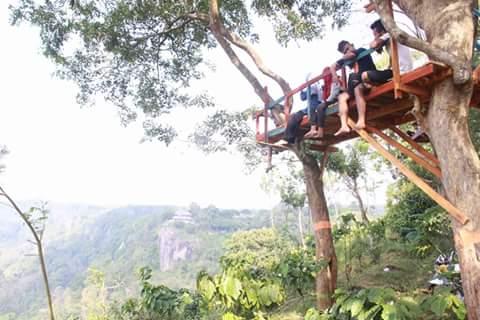 Wisata Rumah Pohon Curugsewu | Rumah pohon | wonderful Indonesia