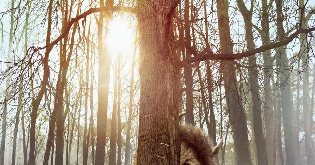 Las hojas del bosque donde viven los monstruos - Donde viven los acaros ...
