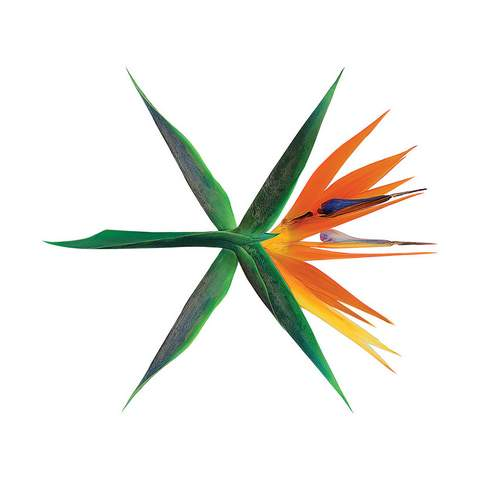 EXO The War - cover Album