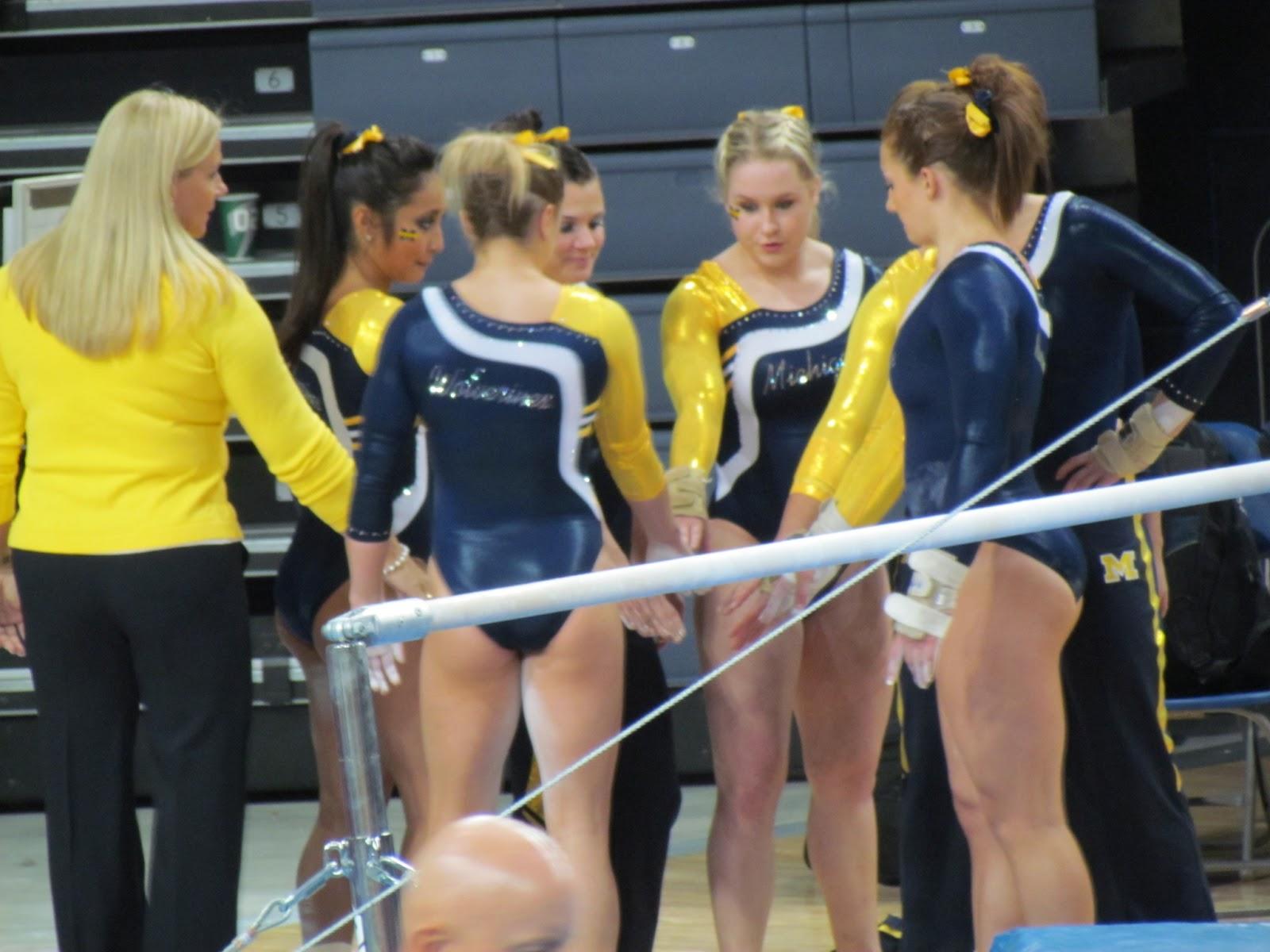 level 6 gymnastics state meet michigan