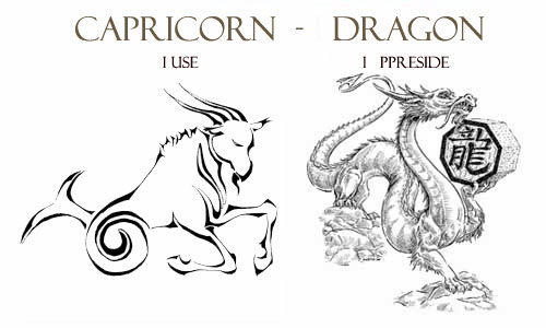 192836653 The Capricorn Dragon Personality Traits : Western and Chinese Zodiac  Combination