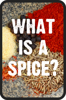 what is the difference between spice and herb?
