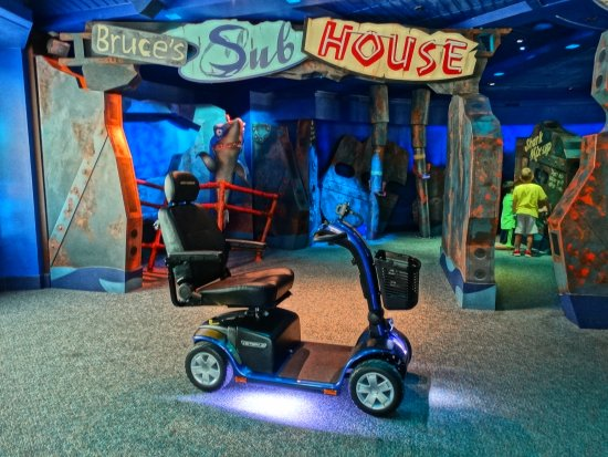 When to Rent a Disney Scooter?