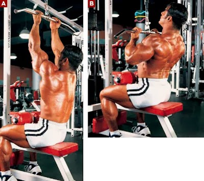 تمارين عضلات الظهر فى كمال الاجسام